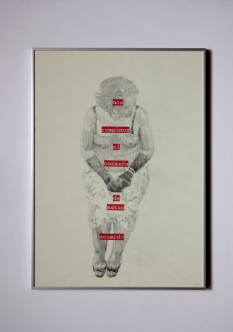 Anto Rabzas / Serie: El idioma de los pájaros / PA. 1 / 50 x 70 cm. 2015 collage y grafito sobre papel.